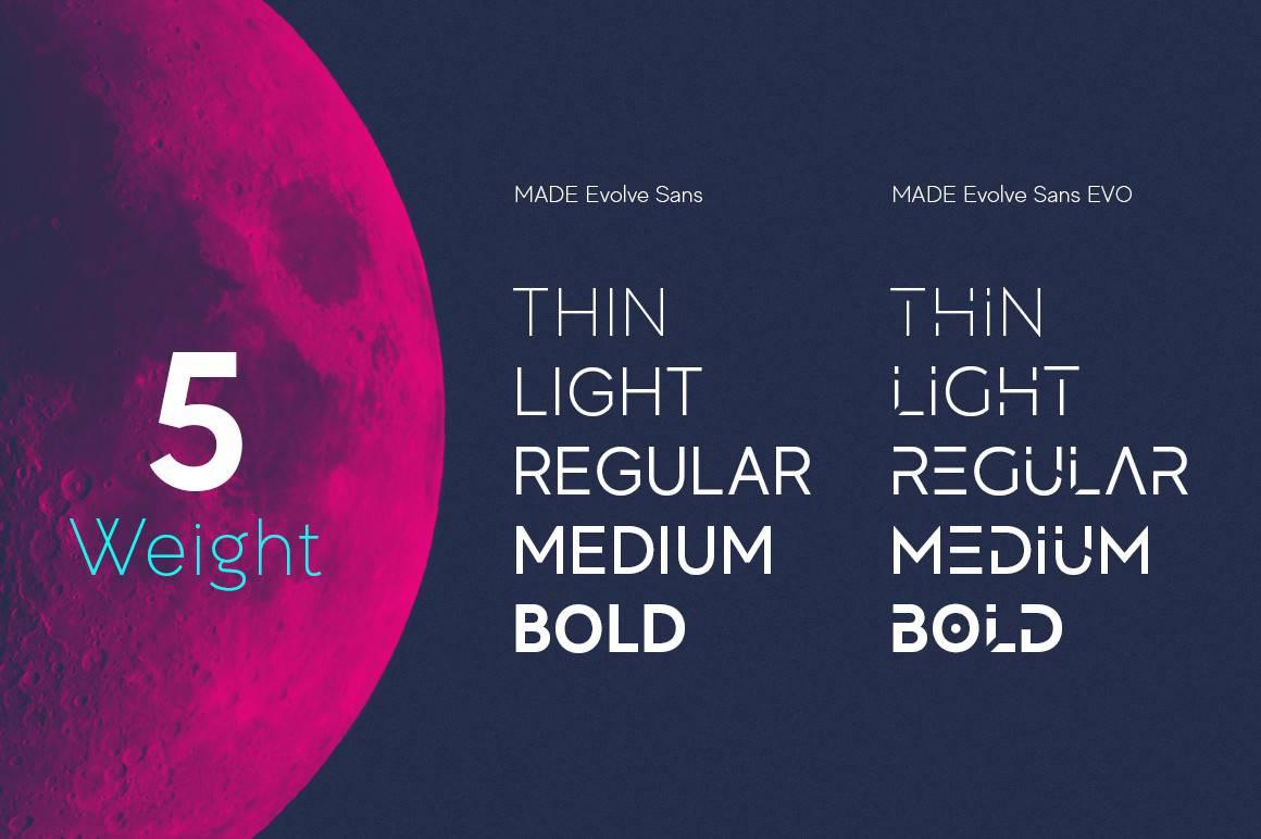 Omega Sans: A classic sans-serif font 2
