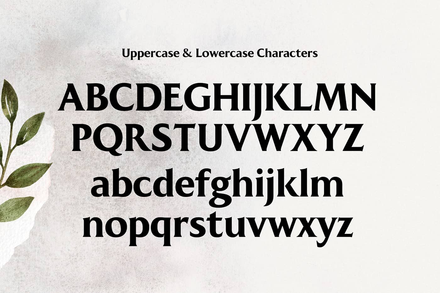 Kenfolg serif typeface 4